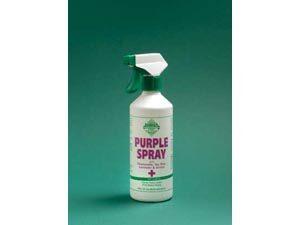 8419-Purple-Spray